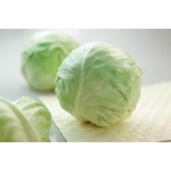 Green cabbage (per kg